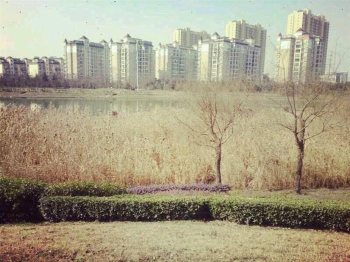 荆州秋天风景图片