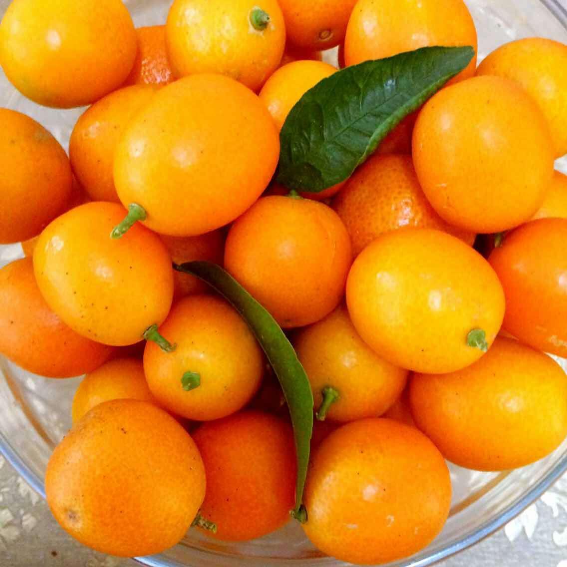 壁纸 矢量 水果 小果 植物 1136_1136