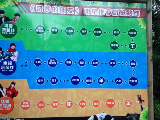 广州番禺长隆大马戏和长隆野生动物园游玩攻略