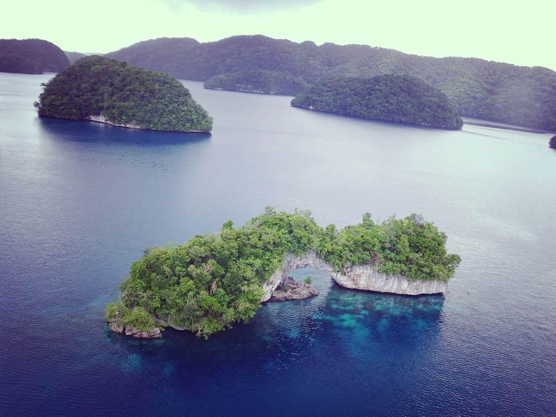 专业的潜水者说,帕劳一定要去,那里水底有1500多种热带鱼类、700多种瑰丽珊瑚,是上帝的水族箱,属于海洋学家公认的世界七大海底奇观之首;但是旅游者却说,要带7个玻璃瓶去帕劳,每个瓶子装一种颜色的海水  帕劳的海水清澈无污染,而且海底景观造型奇特,一会儿是黑黑的礁石,一会儿是斑斓的珊瑚,细细沙砾,还有远古时代沉积的火山灰,这一切都被清澄的海水毫无保留地映上了海面,于是就有了七彩颜色。海底有座玫瑰园,大朵大朵暗紫色的珊瑚,重重叠叠如玫瑰般盛开。  在帕劳群岛,各种绚丽好玩的活动,不比海洋少一分色彩。例如垂