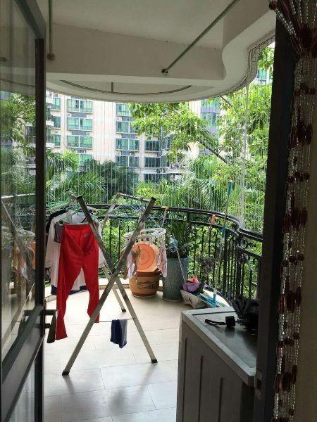 客厅出阳台朝东南,景观视野非常好